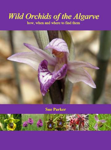 New orchid book